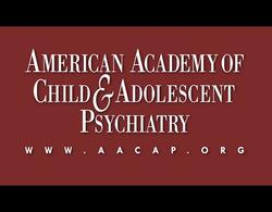 Video shared with permission from the AACAP. (35:49 / ENG)